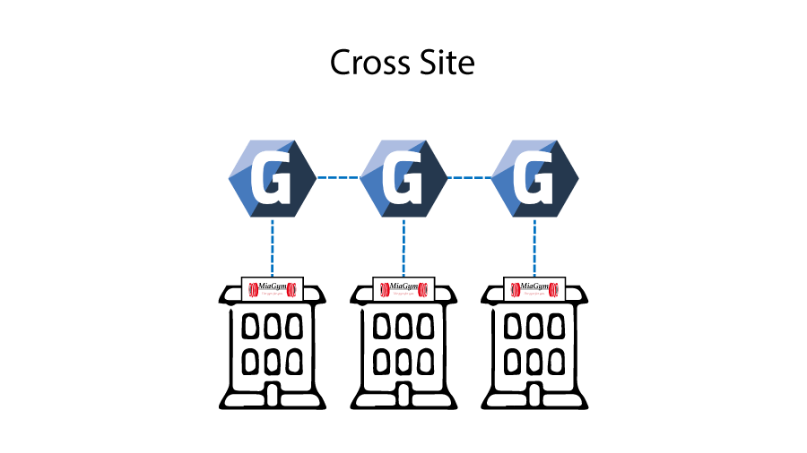 cross site setup for gym enterprise software